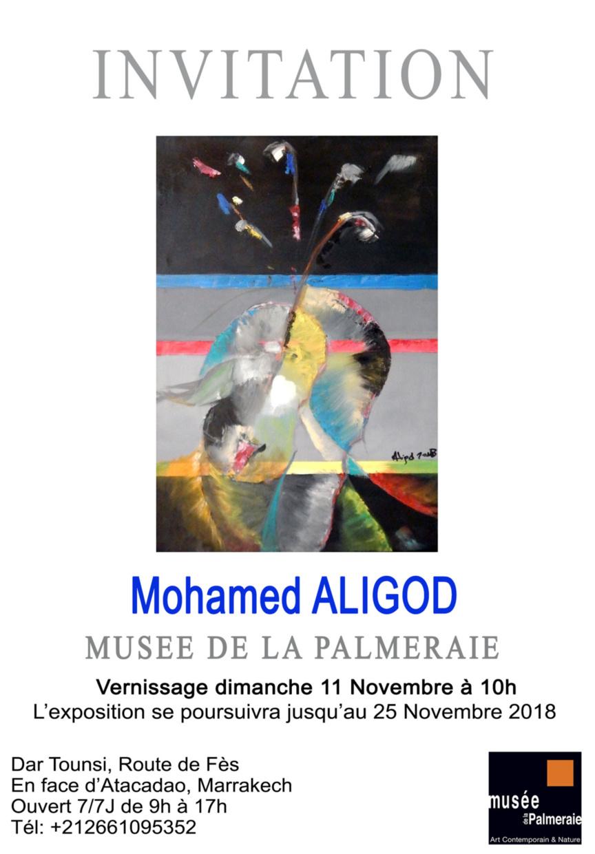Bientôt les œuvres d'Aligod au musée de la Palmeraie à Marrakech