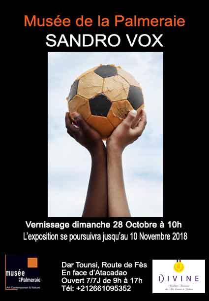 Sandro Vox au musée de la Palmeraie à Marrakech jusqu'au 10 novembre