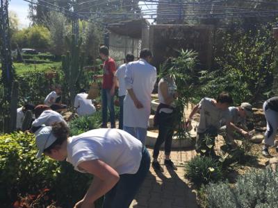 La fondation Benchaâbane soutient la création d'un jardin solidaire dans un centre hospitalier à Marrakech