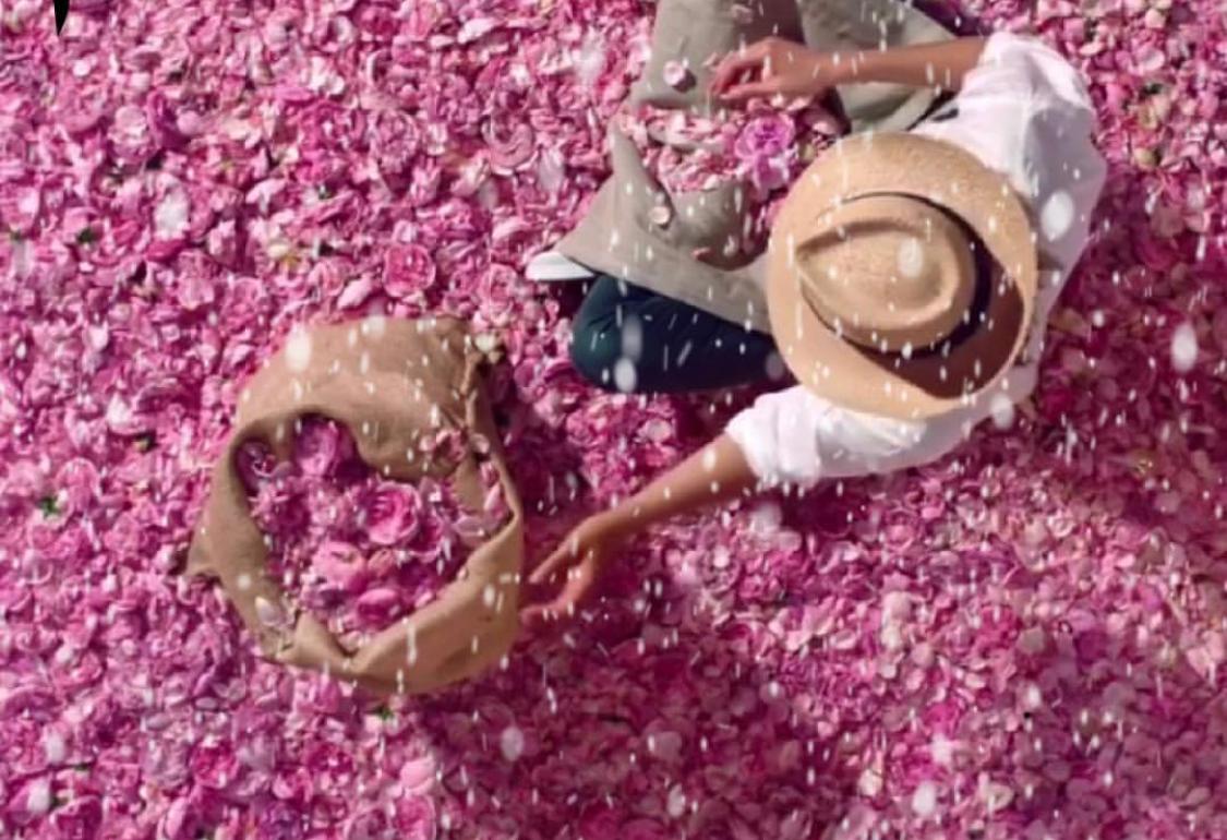 Le parfumeur, ce passeur d'émotions fleuries
